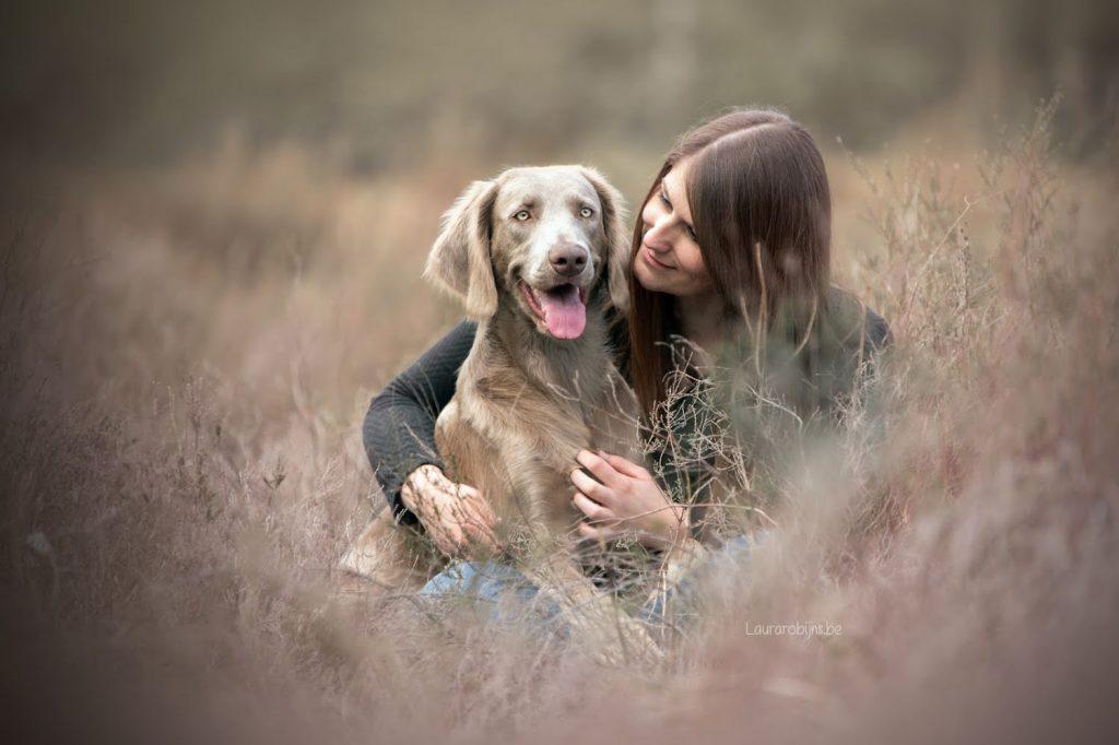 dierenfotografie en hondenfotografie