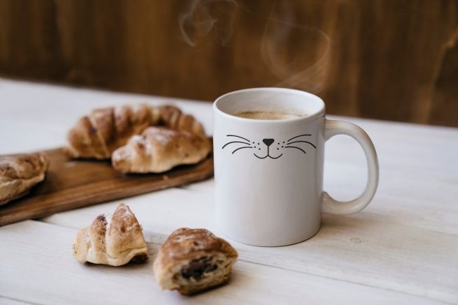 koffiemok cat nose